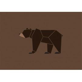 Poster - Medveď hnedý
