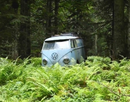 Rescue of a VW 1955 panelvan